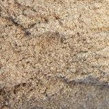 Meelworm Insecten Poeder 100 gram_