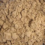 Huiskrekel Insecten Poeder 50 gram_