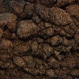 Sprinkhaan Insecten Poeder 50 gram_